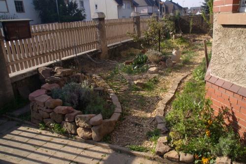 Vorher: Der Vorgarten. Alles noch kahl und klein.